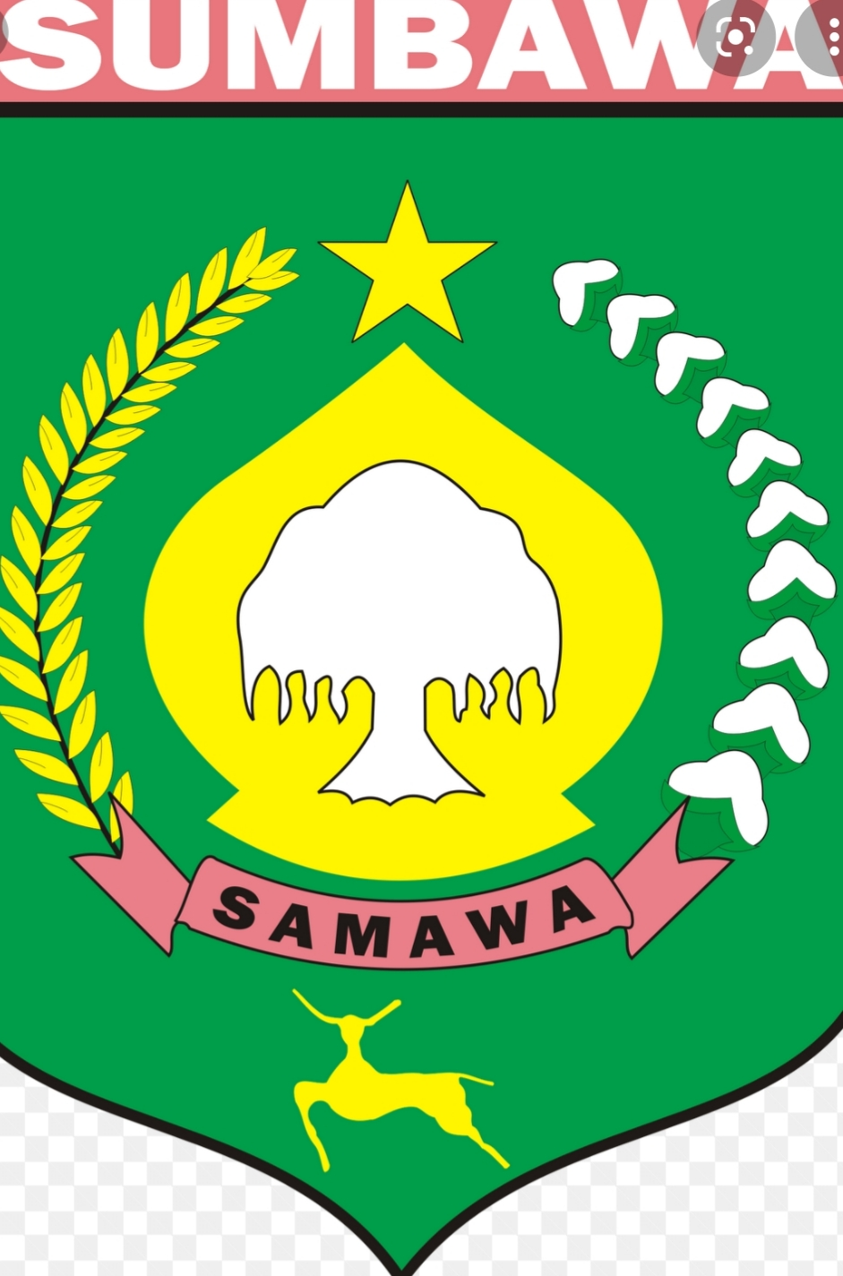 Pengumuman Formasi PPPK Guru Kabupaten Sumbawa Tahun 2021