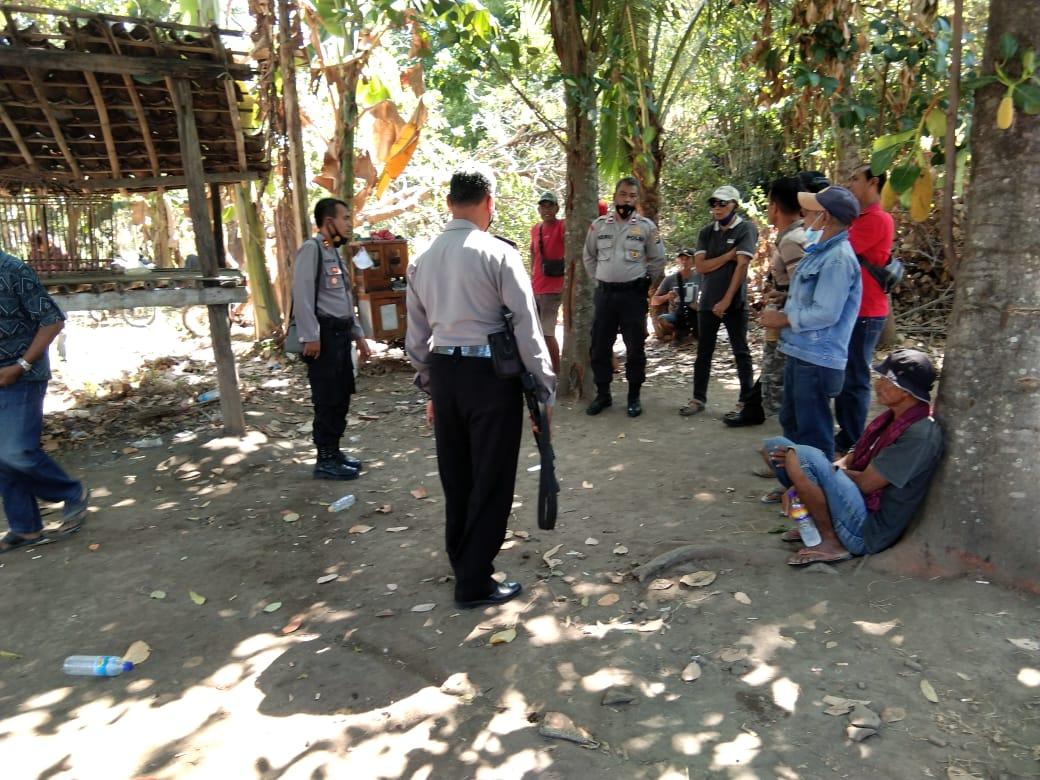 Polisi Gerebek Sabung Ayam di Moyo Hilir