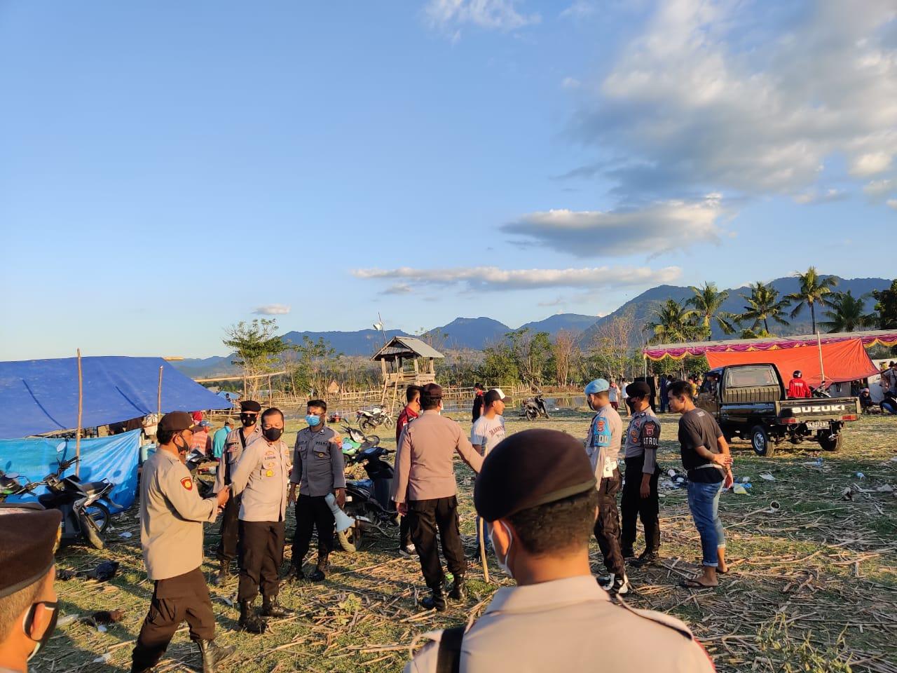 Barapan Kebo di Moyo Hulu Dibubarkan Polisi