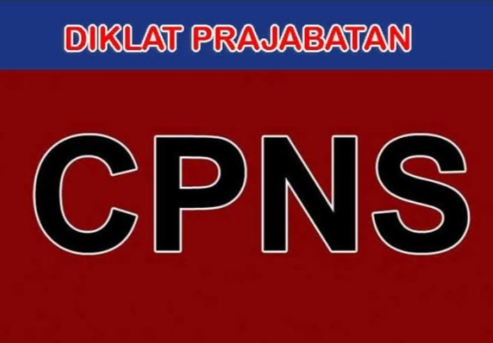 Ini Jadwal Diklat CPNS Terbaru