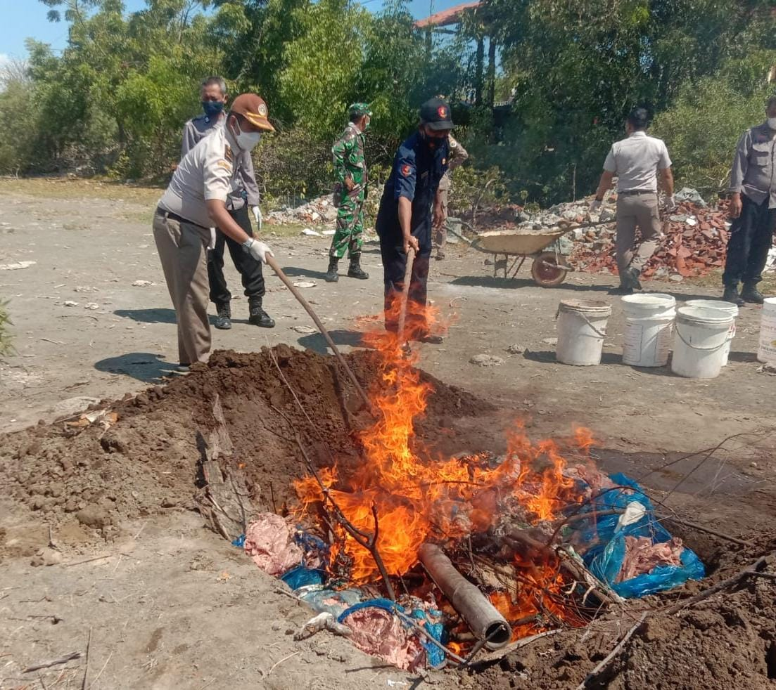 220 Kg Daging Babi yang Hendak Diselundupkan, Tertahan di Pelabuhan Tano